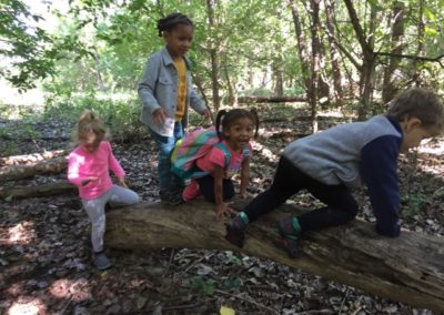 Minneapolis Nature Preschool