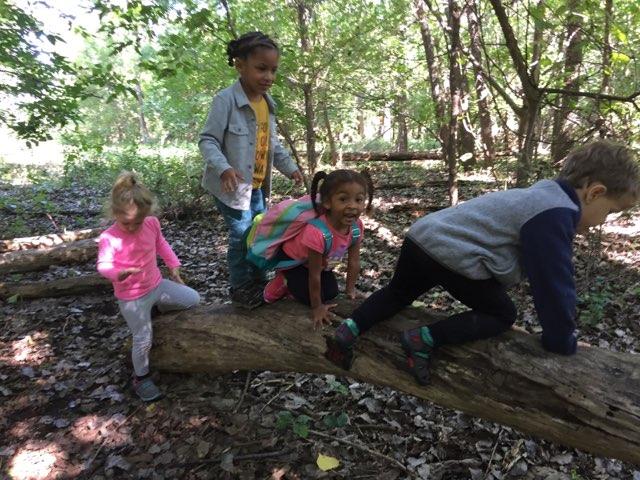 Minneapolis Nature Preschool